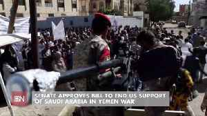 There Is No Senate Support For Saudi War In Yemen [Video]
