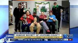 Good morning from the Harford County Humane Society! [Video]