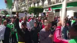 Algerians hold biggest anti-Bouteflika protests [Video]