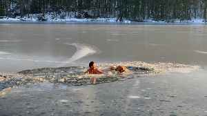 Man and pup rescue two dogs trapped in ice [Video]