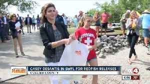 Casey DeSantis helps with redfish releases for red tide recovery [Video]