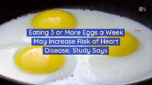 Eating Eggs May Not Be An Eggcellent Idea [Video]