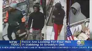 Police Looking For 4 Men In Stabbing At Brooklyn Deli [Video]