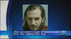 Man Convicted In Death Of Westmoreland Co. Man Jogging With Dog [Video]