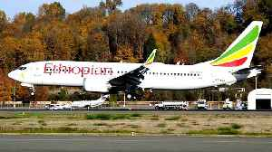 Travellers show confidence in Ethiopian Airlines: Tour operators [Video]
