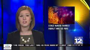 Dogs warn family about fire in the middle of the night [Video]