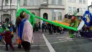 Even Storm Hannah couldn't stop the Birmingham St Patrick's Parade [Video]