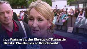 JK Rowling Faces Backlash Over Revealing Dumbledore and Grindelwald's Relationship [Video]