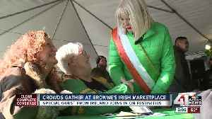 Ireland's Minister of Higher Education Mary Mitchell O'Connor visits Kansas City [Video]