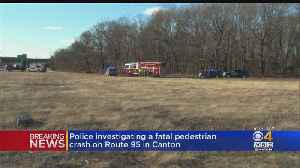 Man Killed By His Own Pickup Truck On Interstate 95 [Video]