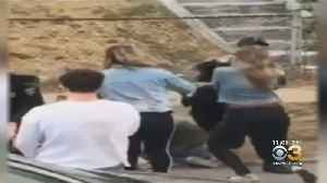 Chester Police Investigating Video Of Officer Striking Woman In Face During Arrest [Video]