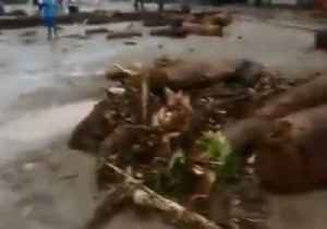 News video: Flash Floods and Mudslides Cause Severe Damage, Fatalities in Papua