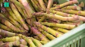Brexit Uncertainty Is Hitting British Asparagus Farmers [Video]