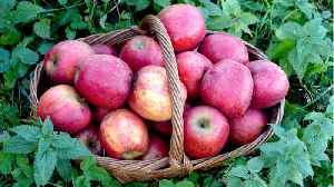 News video: An Apple A Day? Healthy Food Prescriptions Could Save Millions From Heart Disease