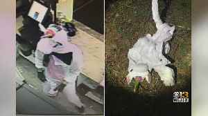 Police Release Surveillance Photos From Unicorn Robbery [Video]