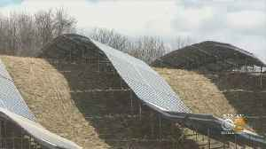 Solar Farms Sprouting Up In New York Suburbs [Video]