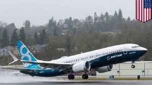 Design issues with the Boeing 737 Max 8 [Video]