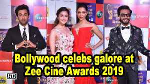 Bollywood celebs galore at Zee Cine Awards 2019 [Video]