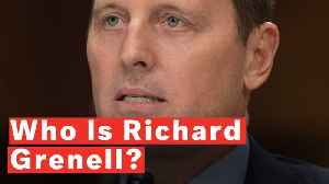 Who Is Richard Grenell? [Video]
