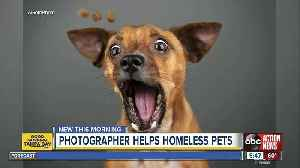 Photographer raising money for homeless pets to get new homes [Video]