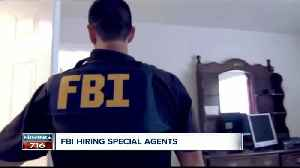 Have you ever dreamed of becoming an FBI agent? The FBI is recruiting [Video]
