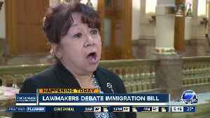 Immigration bill to be heard at Capitol [Video]