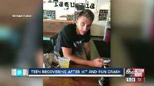 19-year-old hit-and-run crash victim in Sarasota moves out of ICU [Video]