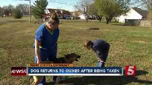 Boy's dog returned after being taken in Rutherford County [Video]