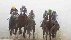 Mayor Pugh sues Stronach Group to keep Preakness in Baltimore [Video]