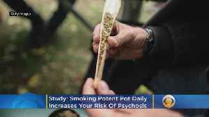 Smoking Strong Pot Daily Raises Psychosis Risk, Study Finds [Video]