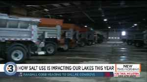 How salt use is impacting our lakes this year [Video]