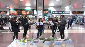 Flowers and music for Madrid commuters to welcome in spring [Video]