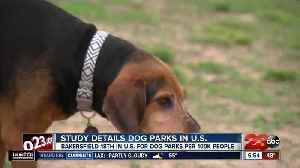 Bakersfield one of the top cities for dog parks [Video]