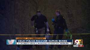 Crews search woods in Delhi Township for more human remains [Video]