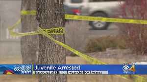 Juvenile Suspect Arrested In Deadly Shooting [Video]
