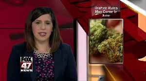 Proposed changes to medical marijuana rules worry some caregivers, dispensary owners [Video]