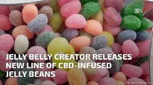A New Line Of CBD Infused Jelly Beans Is Coming [Video]