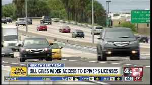 New effort supports undocumented immigrants getting driver's licenses in Florida [Video]