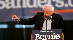 Bernie Sanders Wants To Offset Carbon Emissions [Video]
