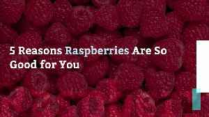 5 Reasons Raspberries Are So Good for You [Video]