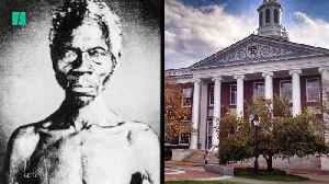 Harvard Sued For Profiting Off Slaves [Video]