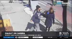 Police Seek Suspect Who Suckered Punched Woman In Brooklyn [Video]
