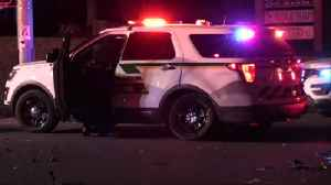 VIDEO Palmer Township police vehicle involved in crash [Video]