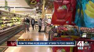 Community efforts to bring in grocery stores to food deserts could get help from new bill [Video]