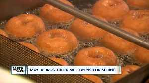Mayer Bros. Cider Miller opens for the spring! [Video]