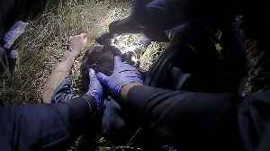 Man Tries to Escape from Police Custody After They Saved His Life in Crash [Video]