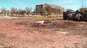 Several Oklahoma City Bombing Memorial Trees Cut Down Following Dangerous Gas Leak at the Capitol [Video]
