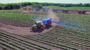 70% Of Produce Sold In The U.S. Contains Pesticide Residue [Video]