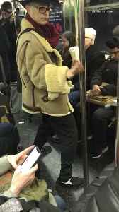 Man kung fu fights with pole inside of subway train [Video]