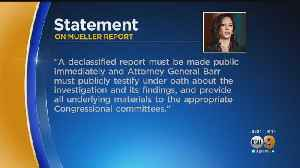 Democratic Presidential Hopeful Kamala Harris Issues Statement Re Mueller Report [Video]